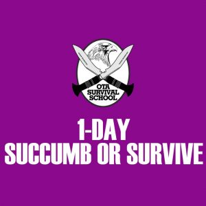 1-day Urban Survival