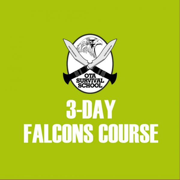 3-day Falcons Course